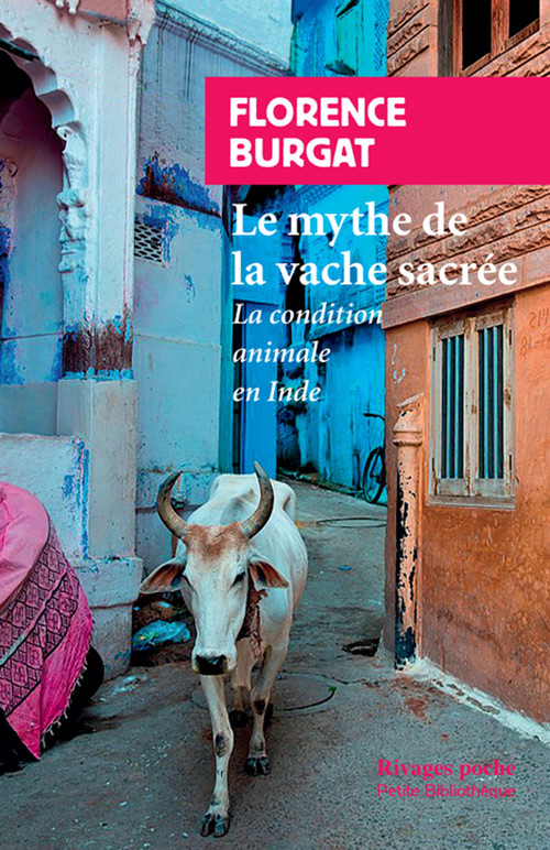 LE MYTHE DE LA VACHE SACREE - LA CONDITION ANIMALE EN INDE