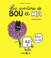 LES AVENTURES DE BOU ET HA, TOME 01