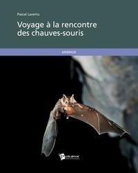 VOYAGE A LA RENCONTRE DES CHAUVES-SOURIS