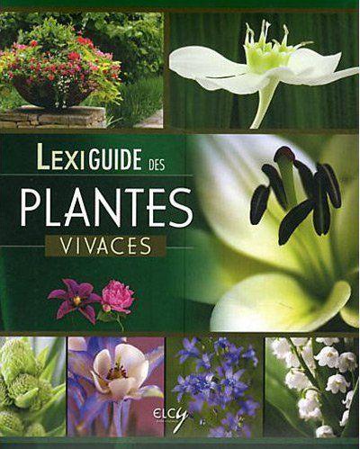 LEXIGUIDE DES PLANTES VIVACES