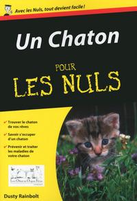 UN CHATON POCHE POUR LES NULS