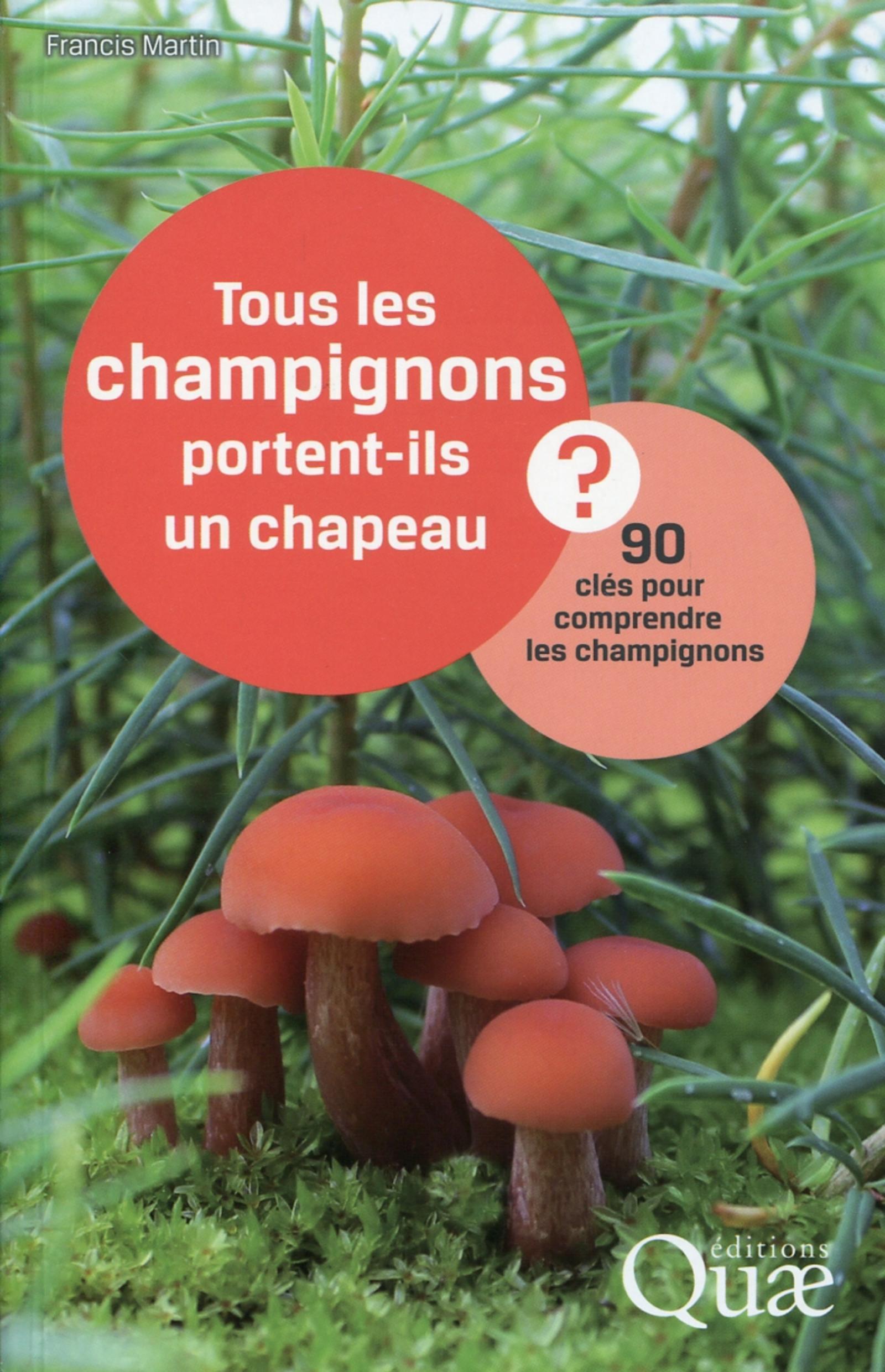 TOUS LES CHAMPIGNONS PORTENT-ILS UN CHAPEAU ? - 90 CLES POUR COMPRENDRE LES CHAMPIGNONS.