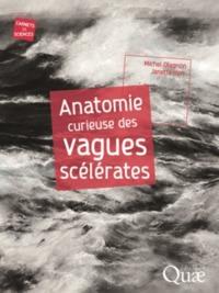 ANATOMIE CURIEUSE DES VAGUES SCELERATES