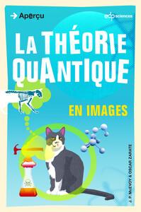 THEORIE QUANTIQUE EN IMAGES (LA)
