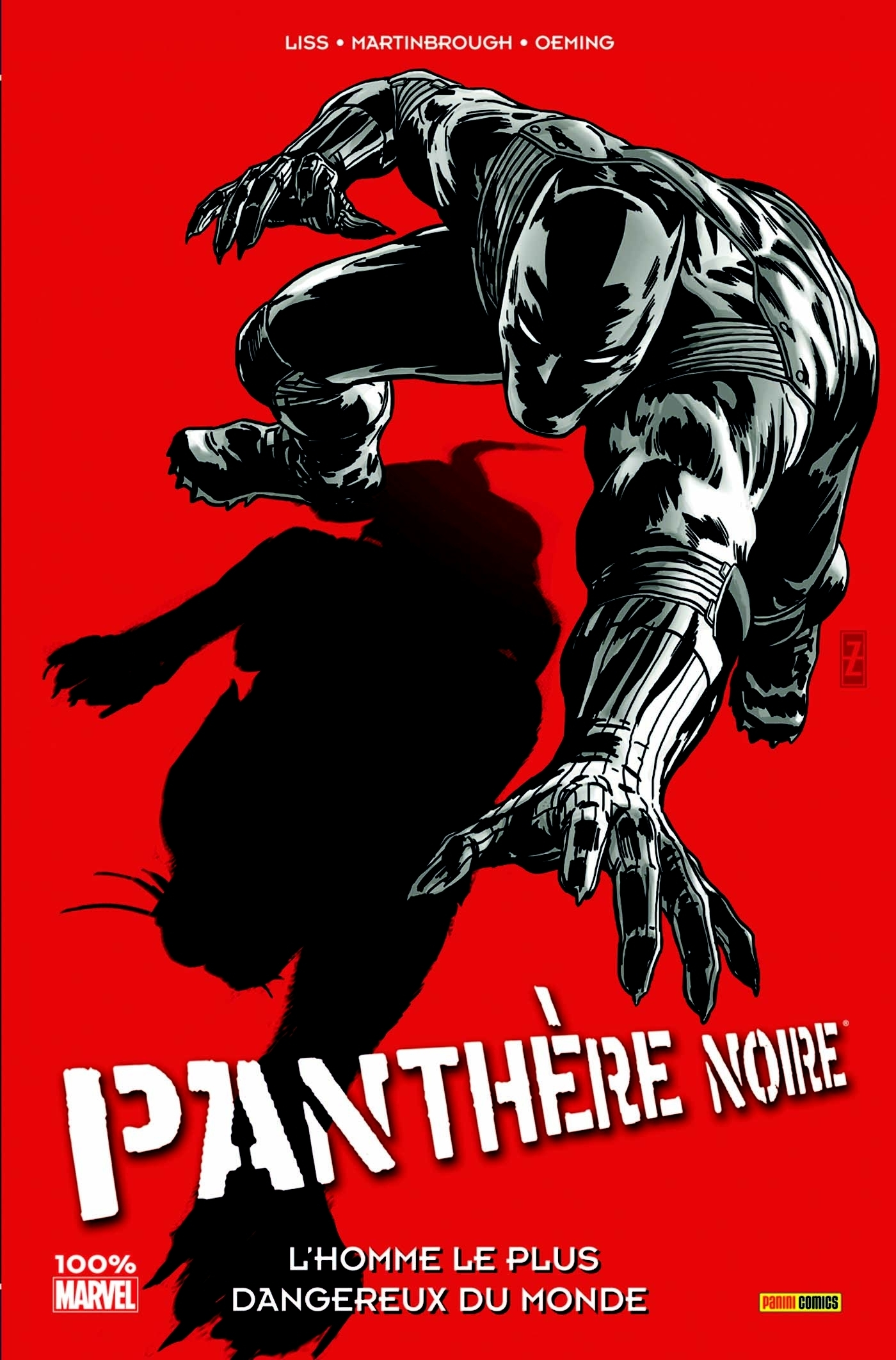 PANTHERE NOIRE T03