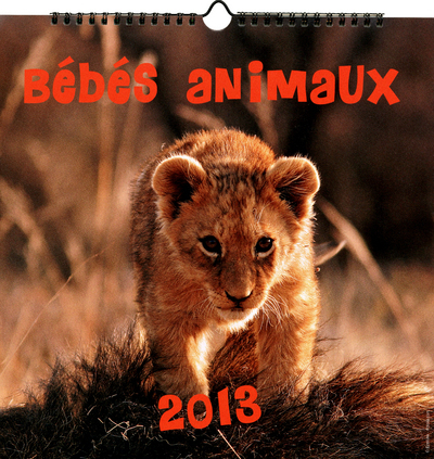 2013 CALENDRIER BEBES ANIMAUX