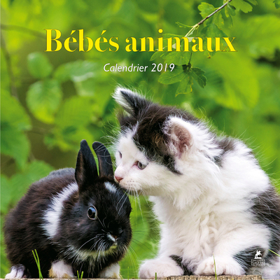 BEBES ANIMAUX - CALENDRIER 2019