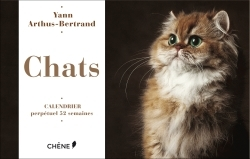 CALENDRIER 52 SEMAINES CHATS