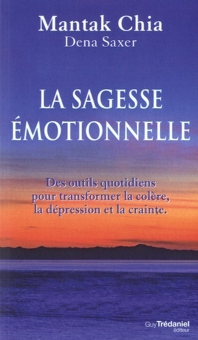 SAGESSE EMOTIONNELLE (LA)