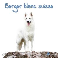 **BERGER BLANC - (2011)
