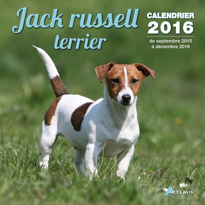 CALENDRIER JACK RUSSEL TERRIER - 2016