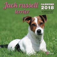 JACK RUSSELL TERRIER (2018)