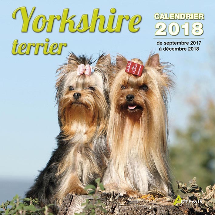 CALENDRIER YORKSHIRE TERRIER 2018