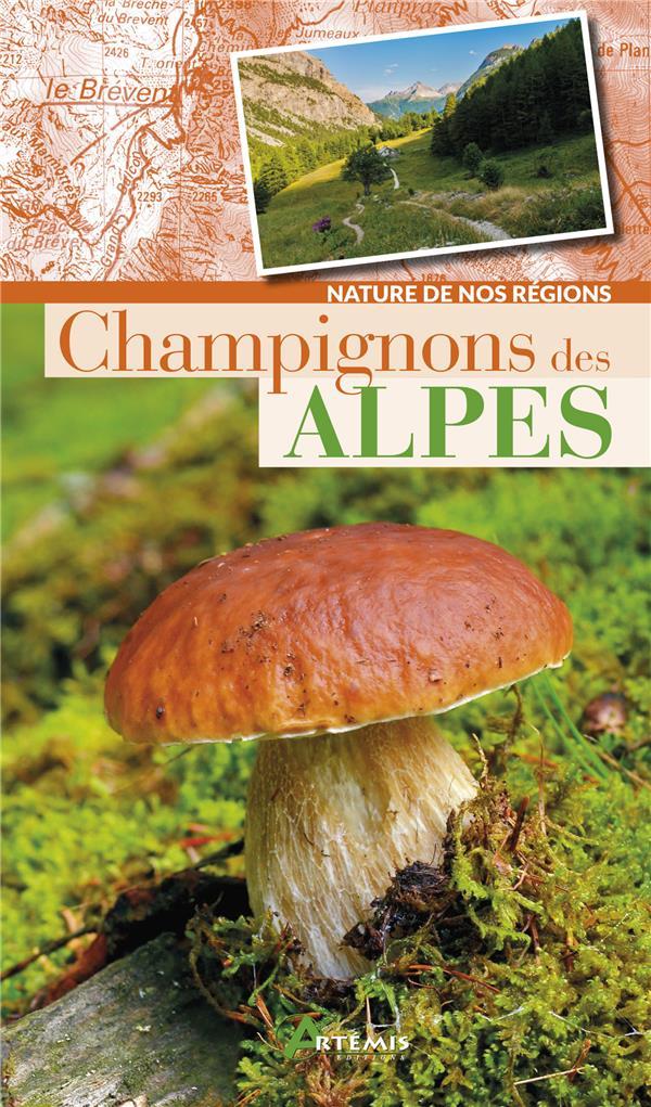 CHAMPIGNONS DES ALPES