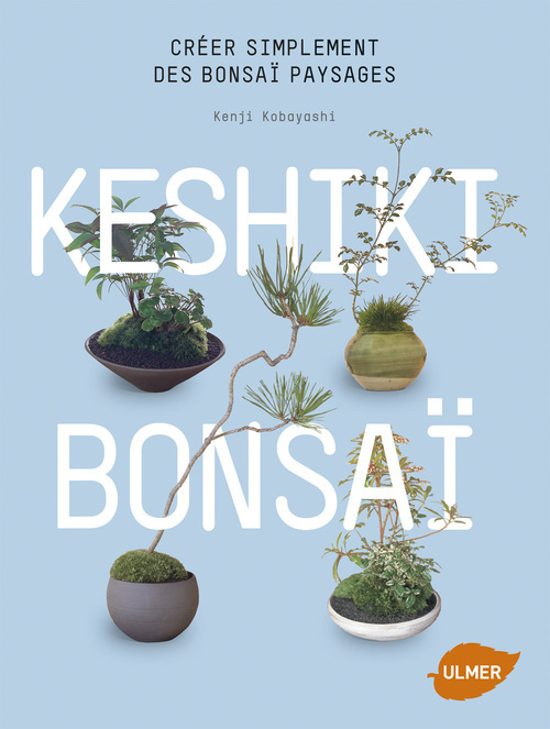 KESHIKI BONSAI. CREER SIMPLEMENT DES BONSAI PAYSAGES