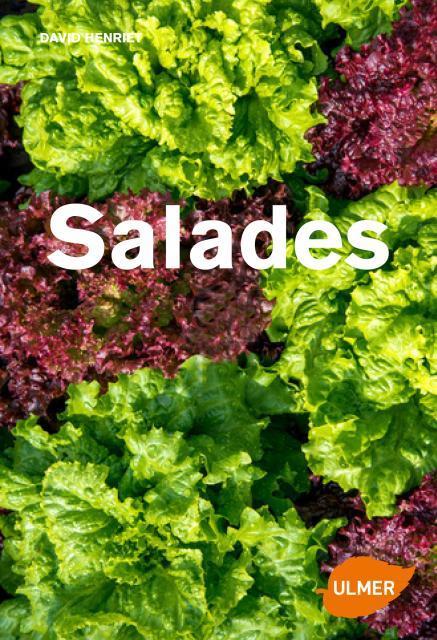 SALADES - TOUS LES TYPES DE SALADES & COMMENT LES CULTIVER