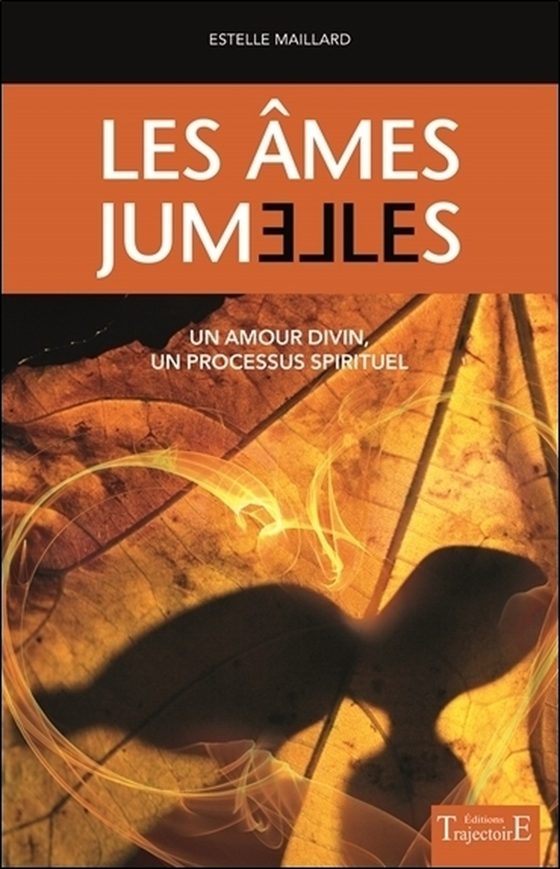 LES AMES JUMELLES - UN AMOUR DIVIN - UN PROCESSUS SPIRITUEL
