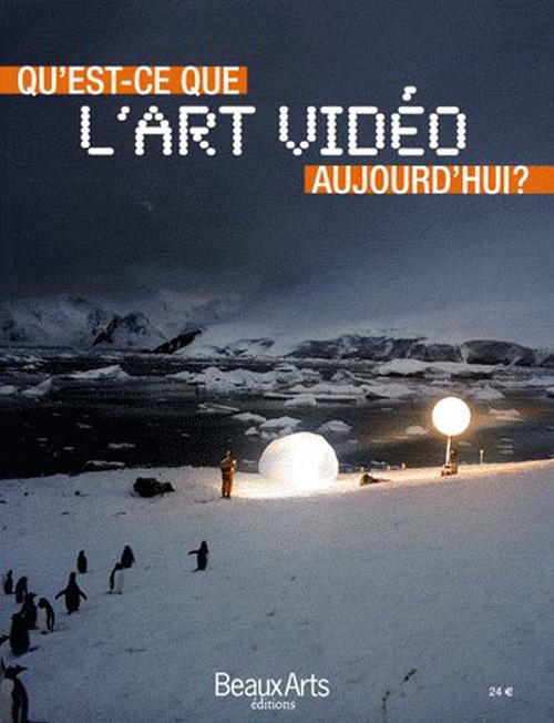 QU'EST-CE QUE L'ART VIDEO AUJOURD'HUI ?
