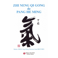 ZHI NENG QI QONG DE PANG HE MING