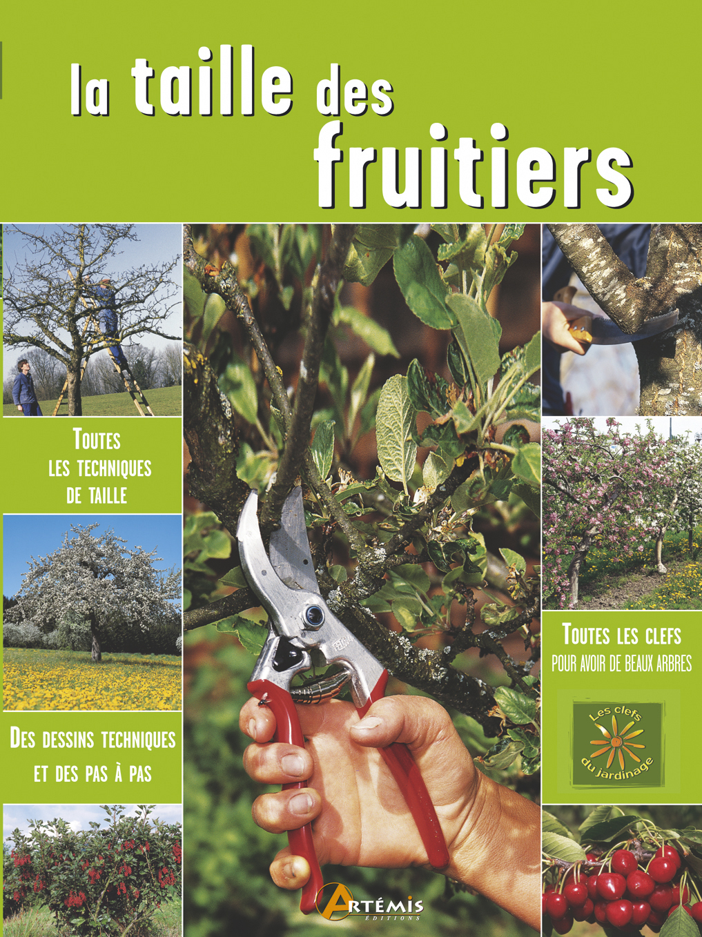 **TAILLE DES FRUITIERS