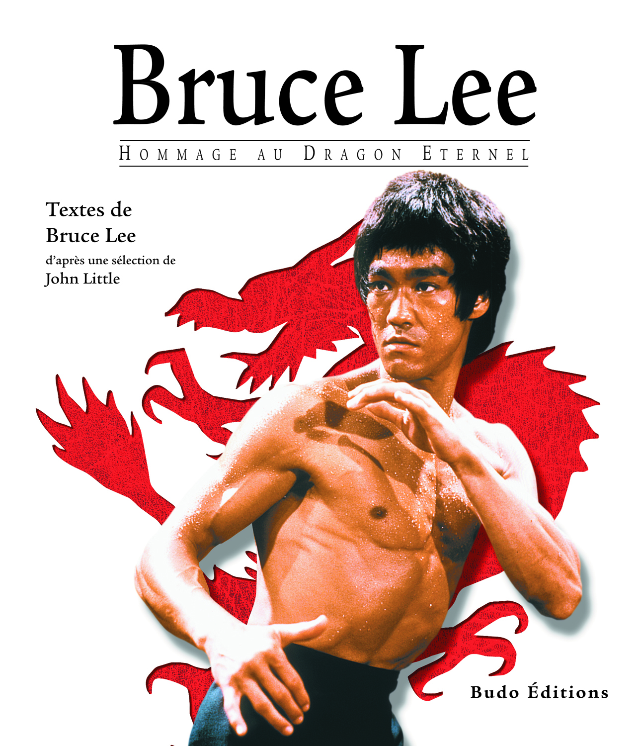 BRUCE LEE HOMMAGE AU DRAGON ETERNEL