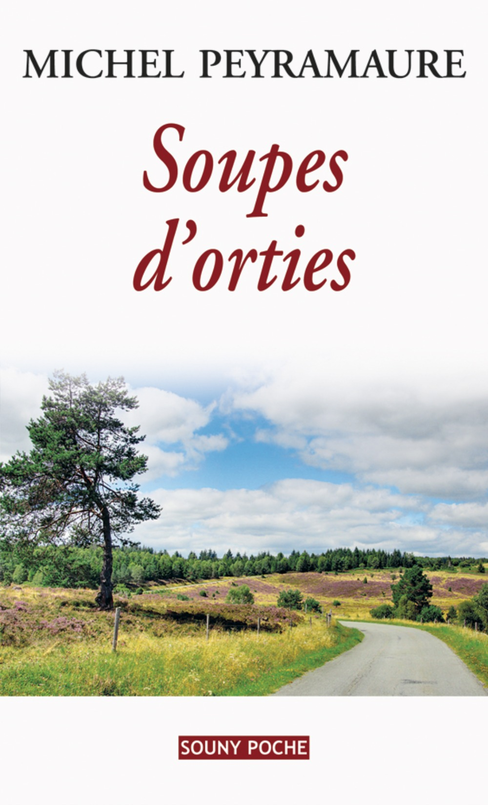 SOUPES D'ORTIES