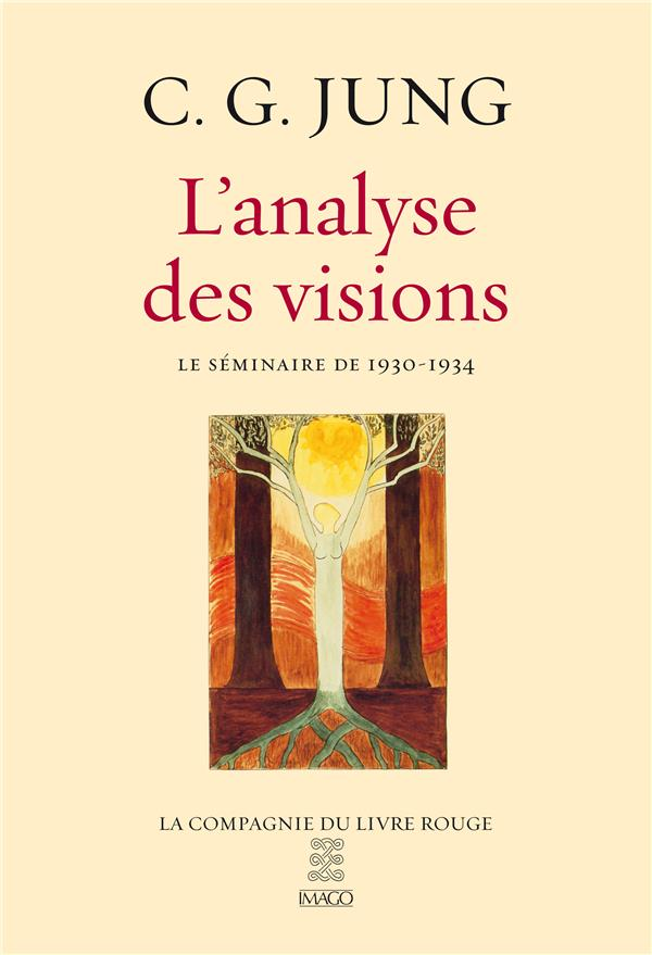 L'ANALYSE DES VISIONS