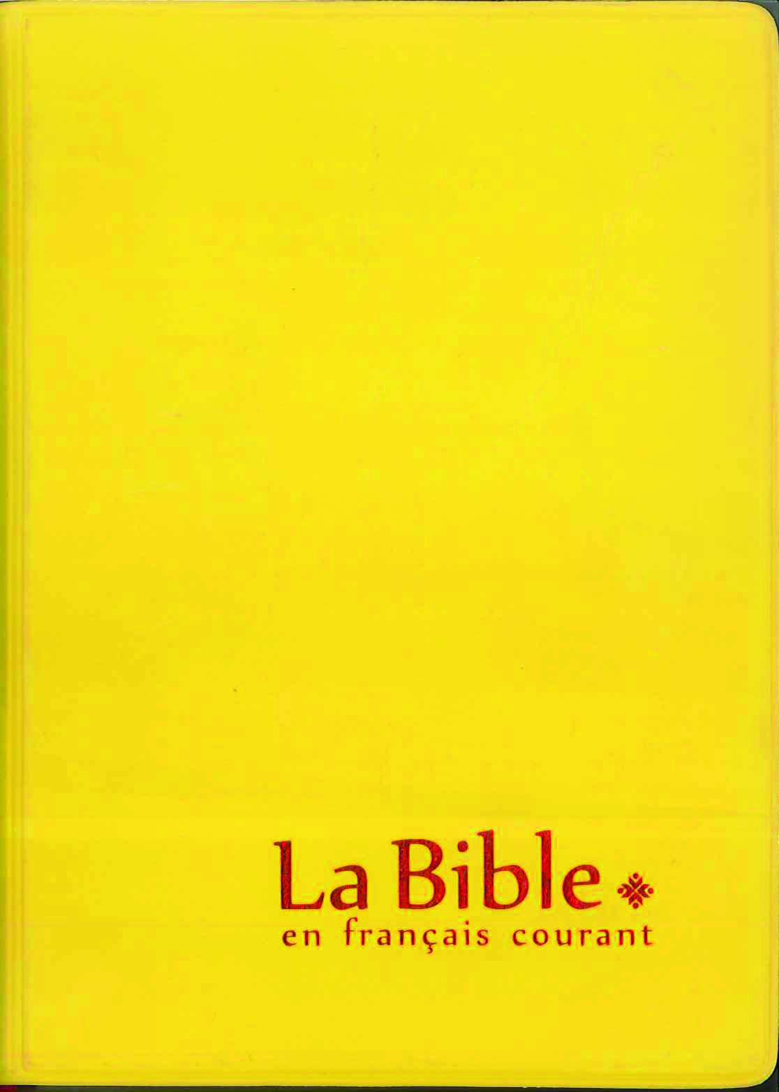 LA BIBLE MINI EN FRANCAIS COURANT + DC JAUNE, VYNIL SOUPLE