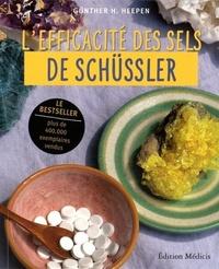 EFFICACITE DES SELS DE SCHUSSLER (L')