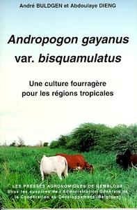 ANDROPOGON GAYANUS VAR. BISQUAMULATUS. UNE CULTURE FOURRAGERE POUR LES REGIONS TROPICALES