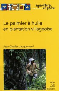 LE PALMIER A HUILE EN PLANTATION VILLAGEOISE