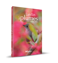 JARDIN A PLUMES - AMENAGEMENTS POUR ACCUEILLIR LES OISEAUX