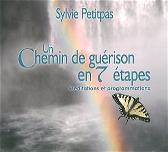 UN CHEMIN DE GUERISON EN 7 ETAPES - LIVRE AUDIO 2 CD