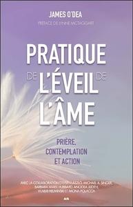 PRATIQUE DE L'EVEIL DE L'AME - PRIERE, CONTEMPLATION ET ACTION