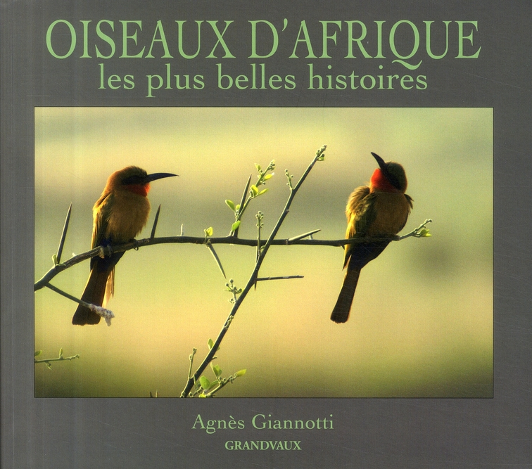 OISEAUX D'AFRIQUE,LES PLUS BELLES...
