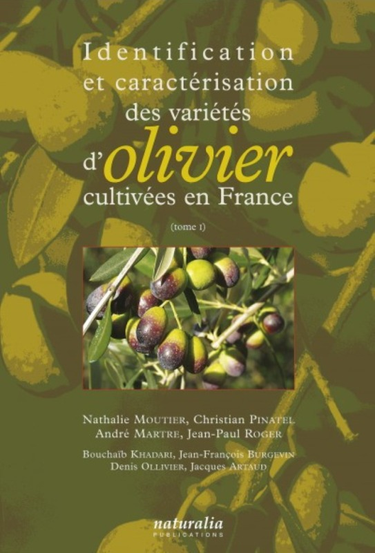 IDENTIFICATION ET CARACTERISATION DES VARIETES D OLIVIERS CULTIVEES EN FRANCE. TOME 1