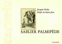 SABLIER PALMIPEDE
