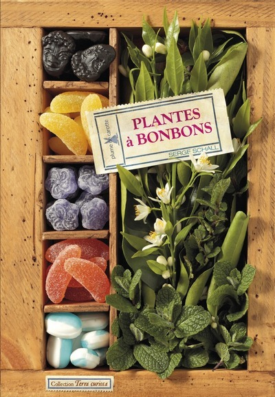 PLANTES A BONBONS