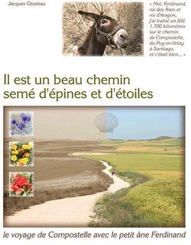 IL EST UN BEAU CHEMIN SEME D'EPINES ET D'ETOILES