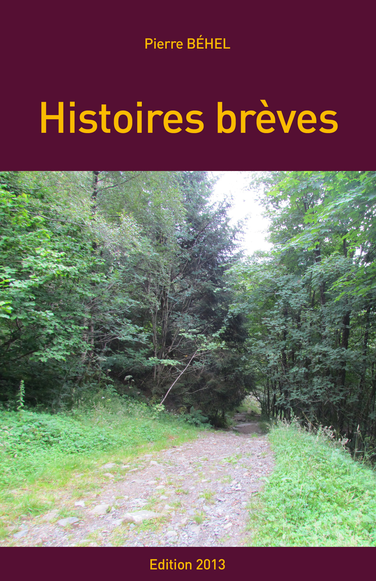 HISTOIRES BREVES - EDITION 2013