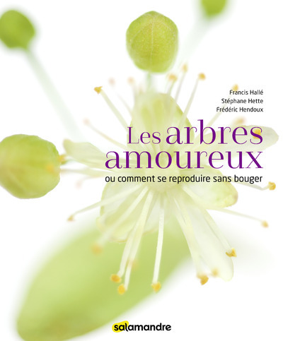 LES ARBRES AMOUREUX
