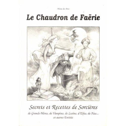 CHAUDRON DE FAERIE