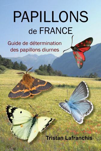 PAPILLONS DE FRANCE GUIDE DE DETERMINATION
