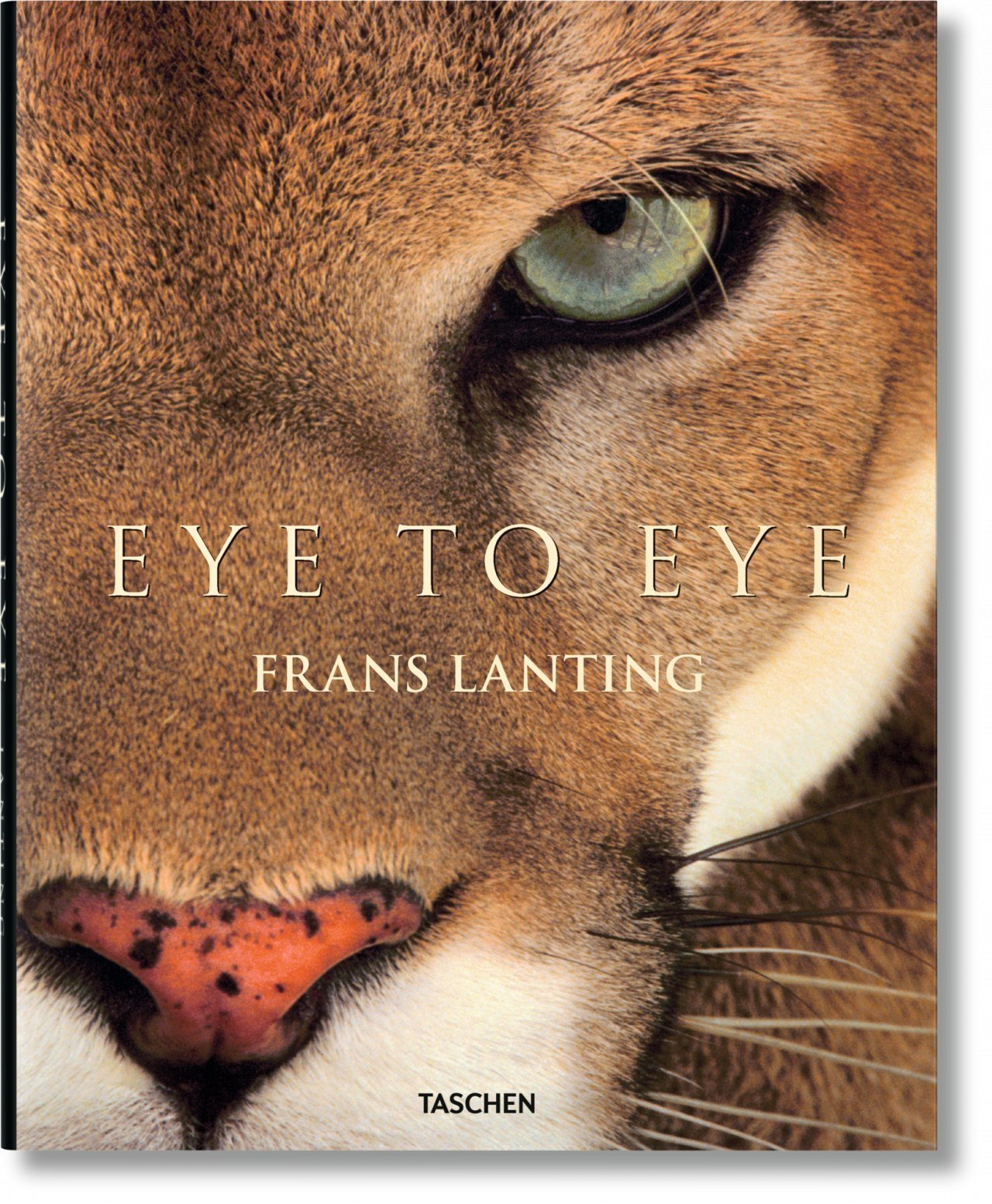 JU-LANTING, EYE TO EYE - ANGLAIS -
