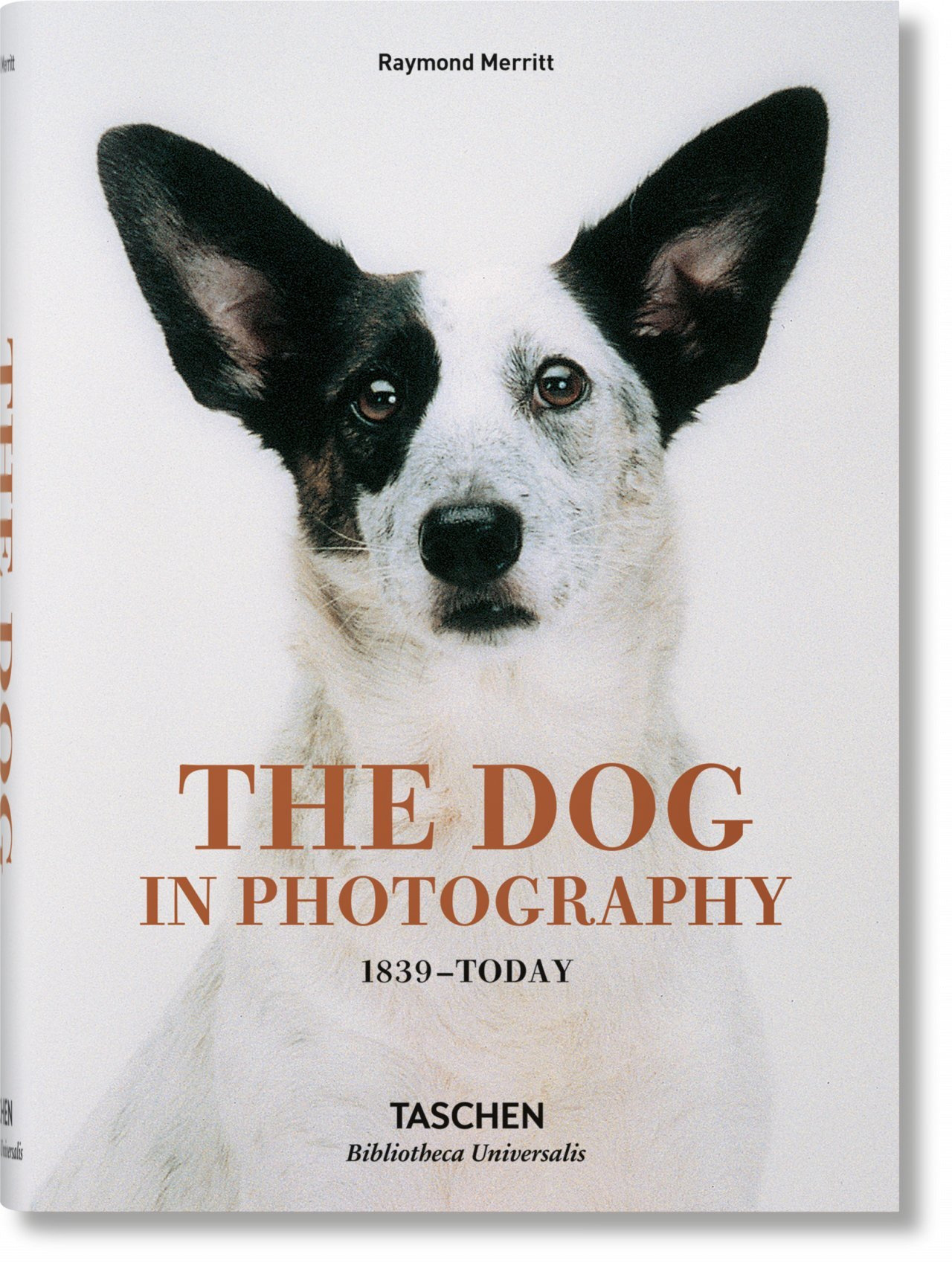 BU-THE DOG IN PHOTOGRAPHY
