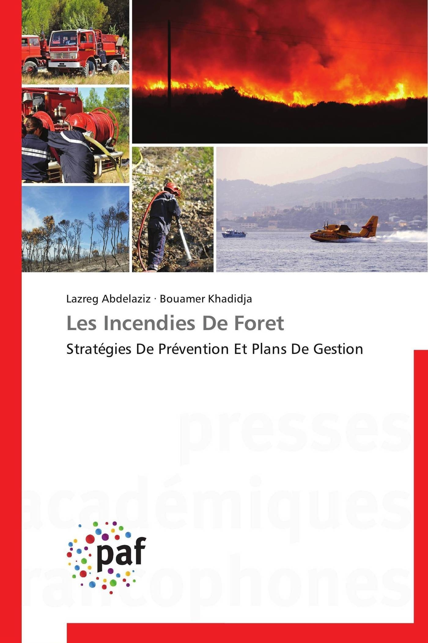 LES INCENDIES DE FORET