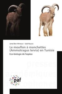 LE MOUFLON A MANCHETTES (AMMOTRAGUS LERVIA) EN TUNISIE