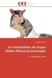 LA CONSULTATION DU SUGAR GLIDER (PETAURUS BREVICEPS)