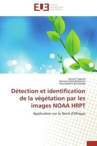 DETECTION ET IDENTIFICATION DE LA VEGETATION PAR LES IMAGES NOAA HRPT