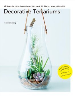 DECORATIVE TERRARIUMS: 47 BEAUTIFUL IDEAS CREATED WITH SUCCULENT, AIR PLANTS, MOSS AND ORCHID: /ANGL